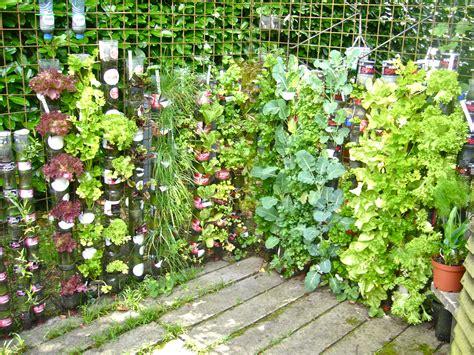 growing vegetable garden the bottle tower method highly appreciated lloyd