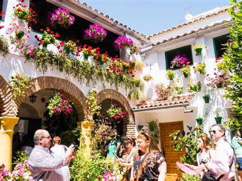 los patios cordoba the patios festival in cordoba culture and nature in one