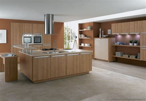 wood cabinets kitchen design modern light wood kitchen cabinets pictures design ideas