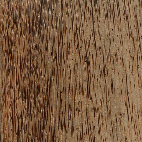 palm woodwork hardwood anatomy the wood database