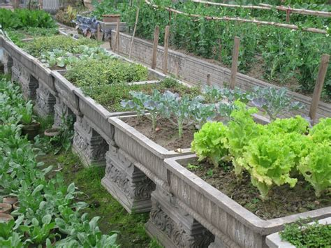container gardens vegetables vegetable container gardening tips and techniques front