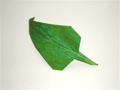 origami stem and leaf joost langeveld origami page