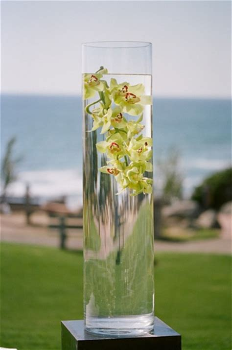 water in vases orchids in vase of water elizabeth designs the