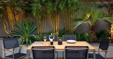 bamboo garden design ideas roof gardens