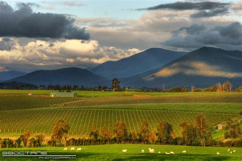 yarra valley yarra valley melbourne images