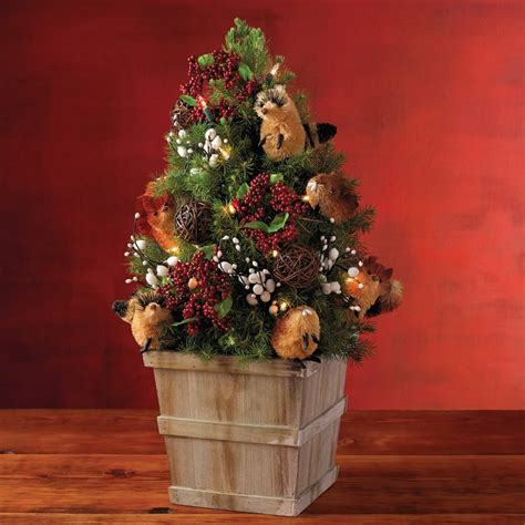 weihnachtsbaum topf weihnachtsbaum im topf so h 228 lt die tanne l 228 nger
