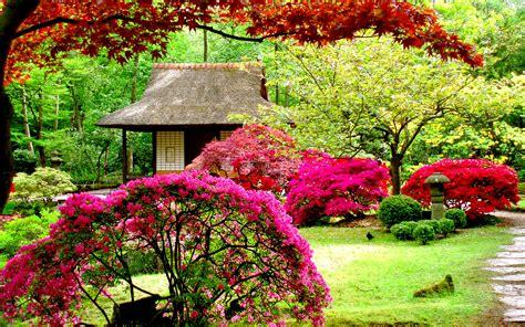 flowers garden pictures lush greenery pictures beautiful gardens wonderwordz