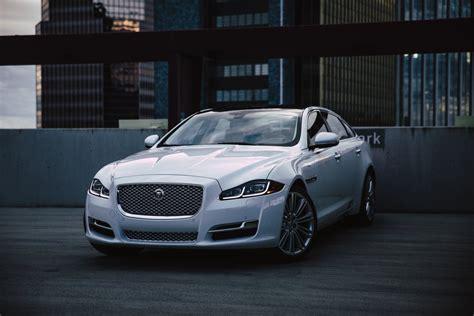 Jaguar Merchandise Usa by Jaguar Usa Jaguarusa