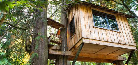 cabane dans les arbres 233 vadez vous abri chalet