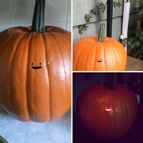 pumpkin cheek this o lantern s tiny is the laziest pumpkin