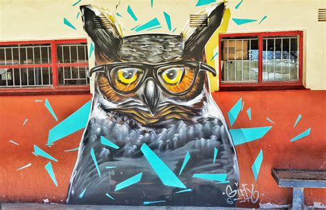spray painter in durban giffy duminy professional artist owl reading glasses