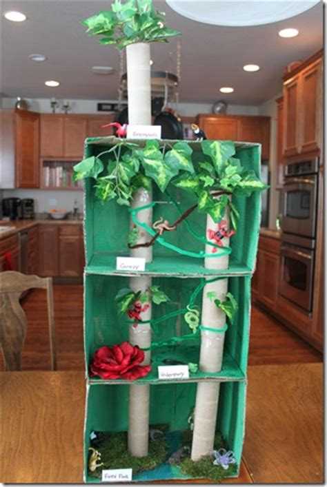 rainforest craft ideas for brazil forest diorama craft confessions of a