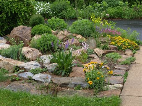rocks for the garden rock garden ideas flower photograph list of plants we grow
