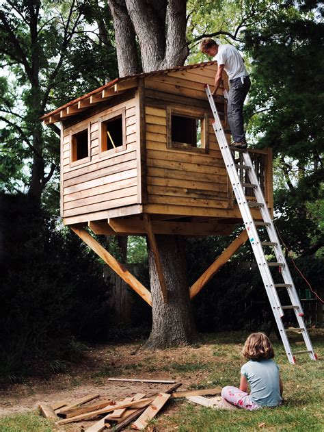 treehouse house how to build a treehouse for your backyard diy tree
