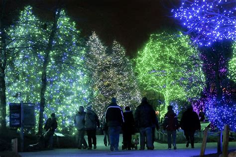 toledo zoo lights hours toledo zoo s lights set attendance record toledo blade