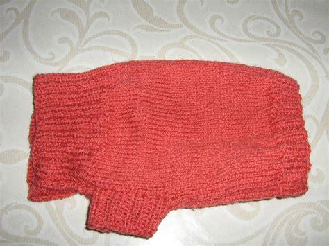 tricoter un manteau pour chien nos conseils