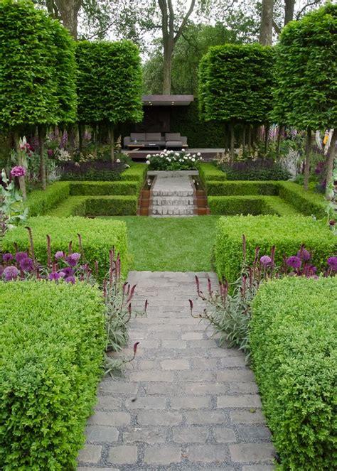 flower and garden show best 20 garden hedges ideas on hedges hedge