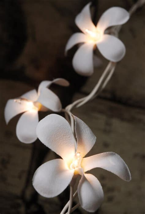 string flower lights flower string lights plumeria 10 20 ct
