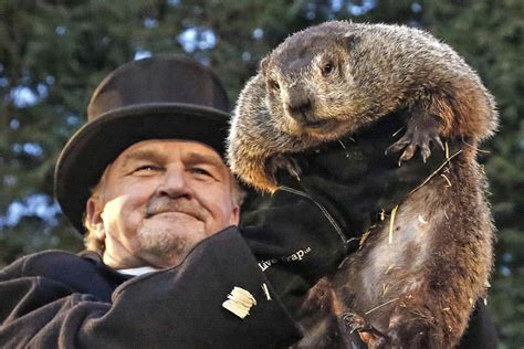 groundhog day groundhog day spotlights america s favorite weather animal