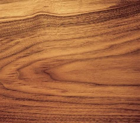 walnut woodworking walnut the pros and cons of different types of wood