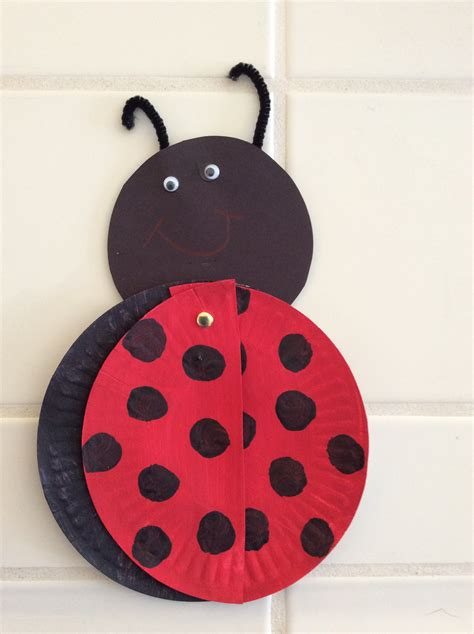 ladybug paper plate craft paper plate bug craft preschool