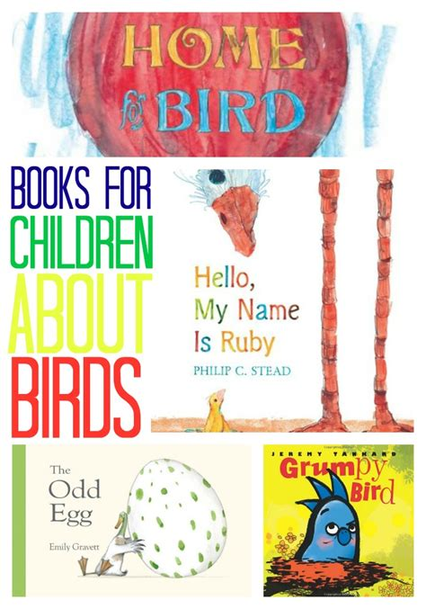 bird picture books books children must read birds