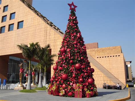 mall tree file tree in moliere shopping mall jpg