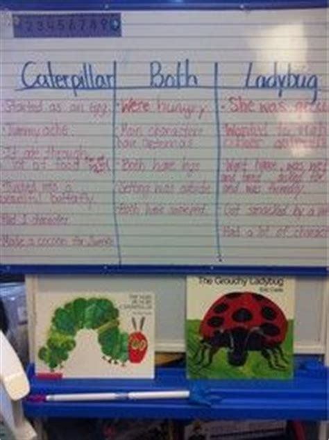 compare and contrast picture books 1000 images about comparing and contrasting on