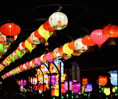 lights new orleans city park dazzles with china lights neworleans me