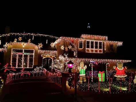 thoroughbred lights thoroughbred lights 2017 dinoto