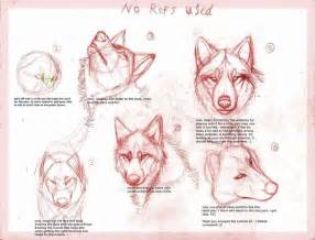 drawing tutorials wolf drawing tutorialby b theawsomegeek how to draw
