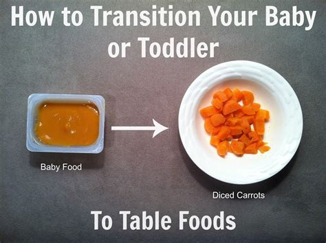 food for how to transition your baby or toddler to table foods