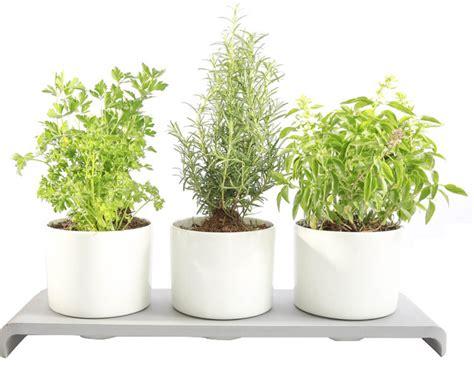 indoor herb planter u herb indoor garden contemporary indoor pots and