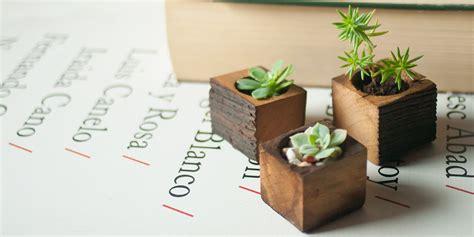 wooden succulent planter wedding gift succulent planter planter box by luzdelbosque