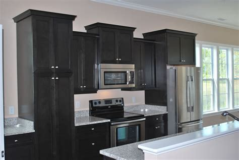 kitchens with black cabinets black kitchen cabinets
