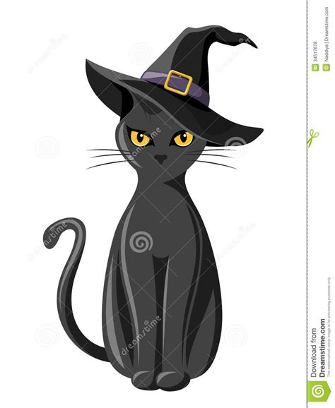 witches cat black cat with witches hat royalty free stock photos