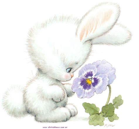 flower and bunny conejos