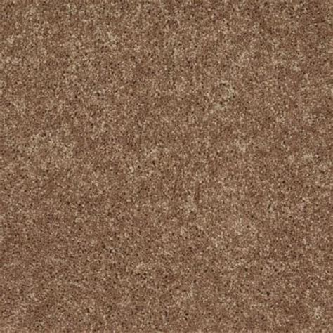 paint colors with brown carpet home decorators collection arbor color burnished