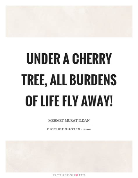 cherry quotes cherry sayings cherry picture quotes