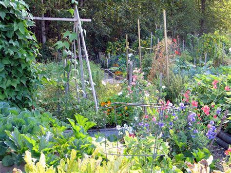Der Gartenbau Schweizer Fachmagazin homoeopathie bei pflanzen