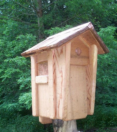 chickadee house plans bird house plans for chickadees birdcage design ideas