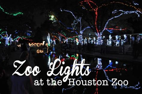 lights at the houston zoo zoo lights at the houston zoo clumsy crafter