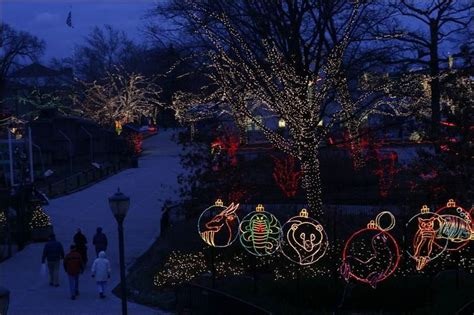 toledo zoo lights hours toledo zoo to turn on its light show toledo blade
