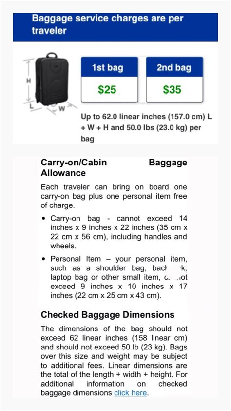 united airlines checked luggage the 25 best carry on luggage ideas on