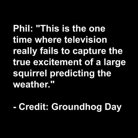 groundhog day quotes groundhog day quotes quotesgram happy groundhog