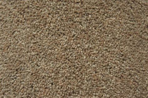 Carpet Water Extraction by Types Of Carpets For Your Home