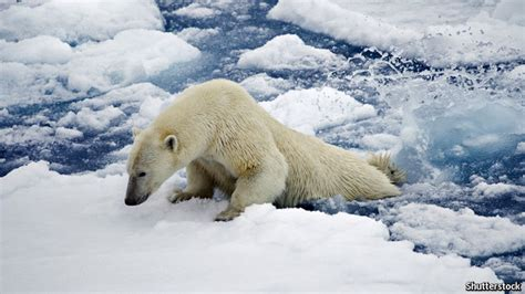 what is chagne made of why scientists are almost certain that climate change is