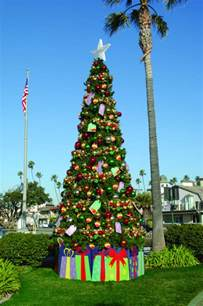 outside tree outdoor trees ideas for display and decor