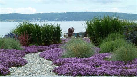 grass garden ideas ornamental grass garden ideas landscape mediterranean with