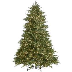 homedepot tree home depot slim tree lizardmedia co